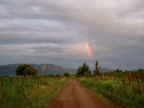 Roads that lead to apple orchards, Durango Mx.